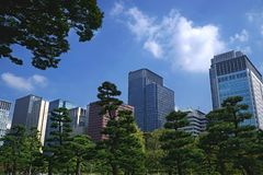 De horizon van Tokyo door Japanse boomtuin stock fotografie