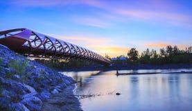 De Horizon van de vredesbrug stock foto's