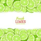 De Horizontale naadloze grens van het kalkfruit Het vector de bovenkant en de bodem Verse geheel van de tropicat groene citroen v Royalty-vrije Stock Foto's