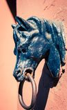 De houder van de paardring Royalty-vrije Stock Foto's