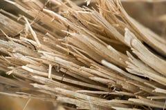 De houten Achtergrond van Splinters Stock Afbeeldingen