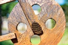 De houten autopedden van leeftijdsdeco in de tuin royalty-vrije stock foto