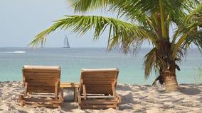De houten bedden van de zitkamerzon onder kokosnotenpalm op exotisch strand stock videobeelden