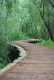 De houten brug Stock Foto's