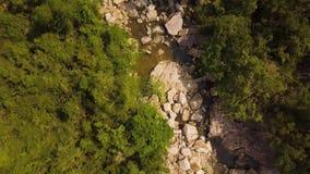 De houten brug van de hommelmening over rotsachtige rivier in berg Bergrivier met grote stenen en groene bosantenne stock videobeelden