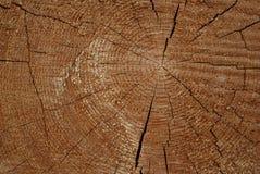 De houten cirkel met een spleet snijdt Stock Afbeeldingen