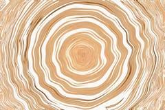 De houten cirkellijn op witte achtergrond royalty-vrije stock foto
