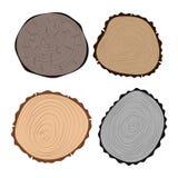 De houten de boomcirkel van de plaktextuur sneed van de installatiejaren van het grondstoffen vastgestelde detail de geschiedenis Royalty-vrije Stock Foto's
