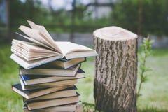 De houten handen houden een boek over bomen Malplaatje voor uw ontwerp Concept ontbossing Stock Afbeelding