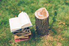 De houten handen houden een boek over bomen Malplaatje voor uw ontwerp Concept ontbossing Royalty-vrije Stock Afbeeldingen