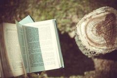 De houten handen houden een boek over bomen Malplaatje voor uw ontwerp Concept ontbossing Royalty-vrije Stock Fotografie