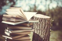 De houten handen houden een boek over bomen Malplaatje voor uw ontwerp Concept ontbossing Stock Afbeeldingen