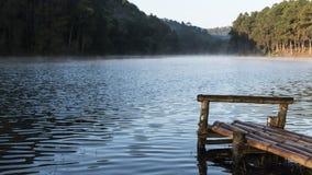 De houten haven bij het reservoir Stock Fotografie