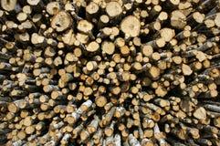 De houten industrie Stock Fotografie