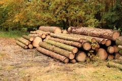 De houten industrie stock foto's