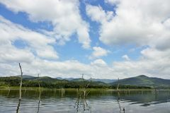 De houten karkassen op water en blauwe hemel wijst op de oppervlakte in Srinakarin-dam Stock Afbeelding