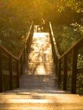 De houten ladder glanste met de zon royalty-vrije stock foto's