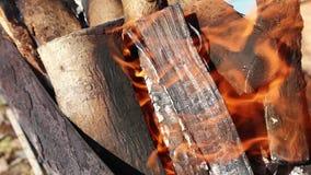 De houten logboeken branden in de grill, wikkelt de brand de boom in de grill, vlam, brand stock footage