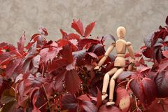 De houten mens zit op de rode bladeren van de meisjedruiven royalty-vrije stock afbeelding