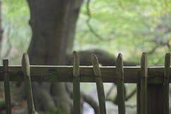De houten omheining van het land stock afbeeldingen