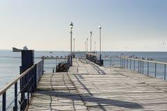 De houten pijler die in het overzees en de zeemeeuwen handelen Stock Foto