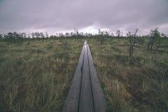 de houten promenade van het plankvoetpad op moerasgebied voor recreatietoeristen - de uitstekende retro film ziet eruit stock foto