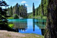 De Houten rivier hoofdwateren komt omhoog in Jackson Kimball State Park, Oregon en stromen neer aan Bureau Meer Het is goed - gek stock foto's
