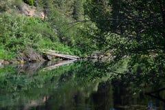De Houten rivier hoofdwateren komt omhoog in Jackson Kimball State Park, Oregon en stromen neer aan Bureau Meer Het is goed - gek royalty-vrije stock fotografie