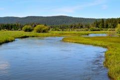De Houten rivier hoofdwateren komt omhoog in Jackson Kimball State Park, Oregon en stromen neer aan Bureau Meer Het is goed - gek stock fotografie