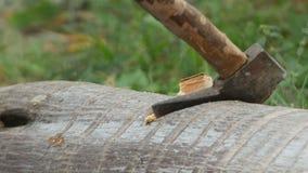 De houten scherpe activiteit door bijl stock footage