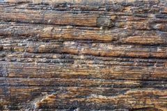 De houten textuur van de Grungeaas Royalty-vrije Stock Foto's