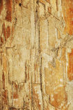 De houten textuur van Grunge Stock Foto's