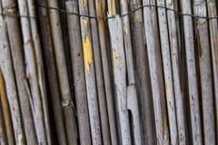 De houten textuur van het bamboe Stock Afbeeldingen