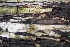 De houten vloer van het ruïnecement Royalty-vrije Stock Afbeelding