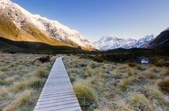 De houten weg voorzag wandelaars om tot het nationale park toegang te hebben Stock Fotografie