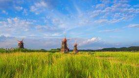 De houten windmolens van de tijdtijdspanne het gebied in het park, Zuid-Korea stock video