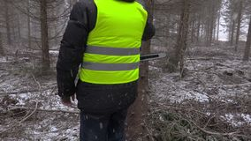 De houthakker neemt de kettingzaag van stomp in het bos in de winter stock videobeelden