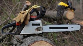 De houthakker neemt kettingzaag stock video