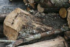 De houtsnede voor brandstof, sluit omhoog stock fotografie