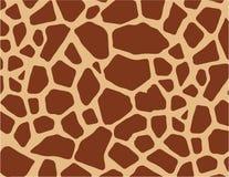 De huid van de giraf   Stock Afbeelding