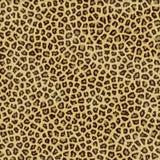 De huid van de luipaard Stock Foto