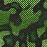 De huid van de slang Royalty-vrije Stock Fotografie