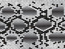 De huid van de slang in zwart-wit Royalty-vrije Stock Foto