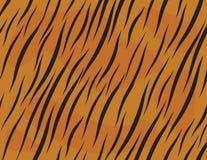 De huid van de tijger Royalty-vrije Stock Foto's