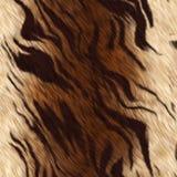 De huid van de tijger Royalty-vrije Stock Foto