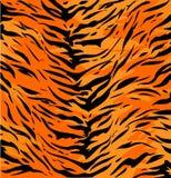 De huid van de tijger Royalty-vrije Stock Fotografie