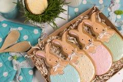 De huidige doos van de familievakantie, giftkaart, Pasen-konijnen honing-cake Stock Fotografie