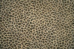 De huidpatroon van de luipaard Royalty-vrije Stock Foto's