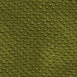 De huidtextuur van de krokodil Royalty-vrije Stock Foto's