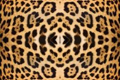 De huidtextuur van de luipaard Stock Afbeeldingen